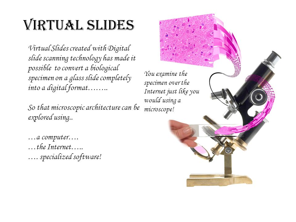 Virtual Slides created with Digital slide scanning technology has made it possible to convert a biological specimen on a glass slide completely into a