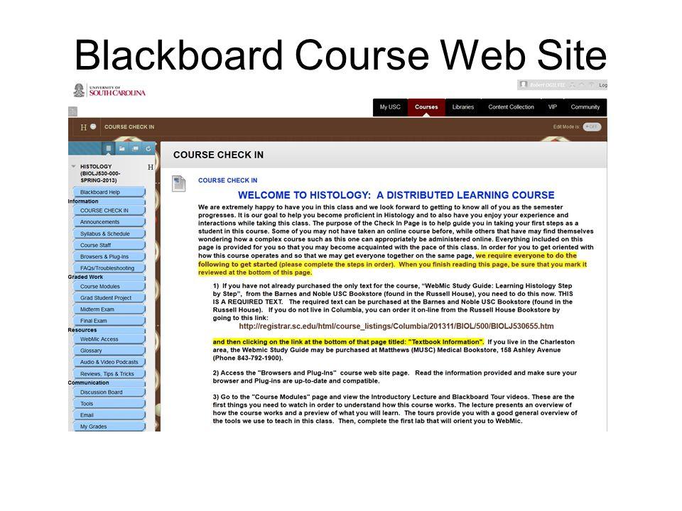 Blackboard Course Web Site