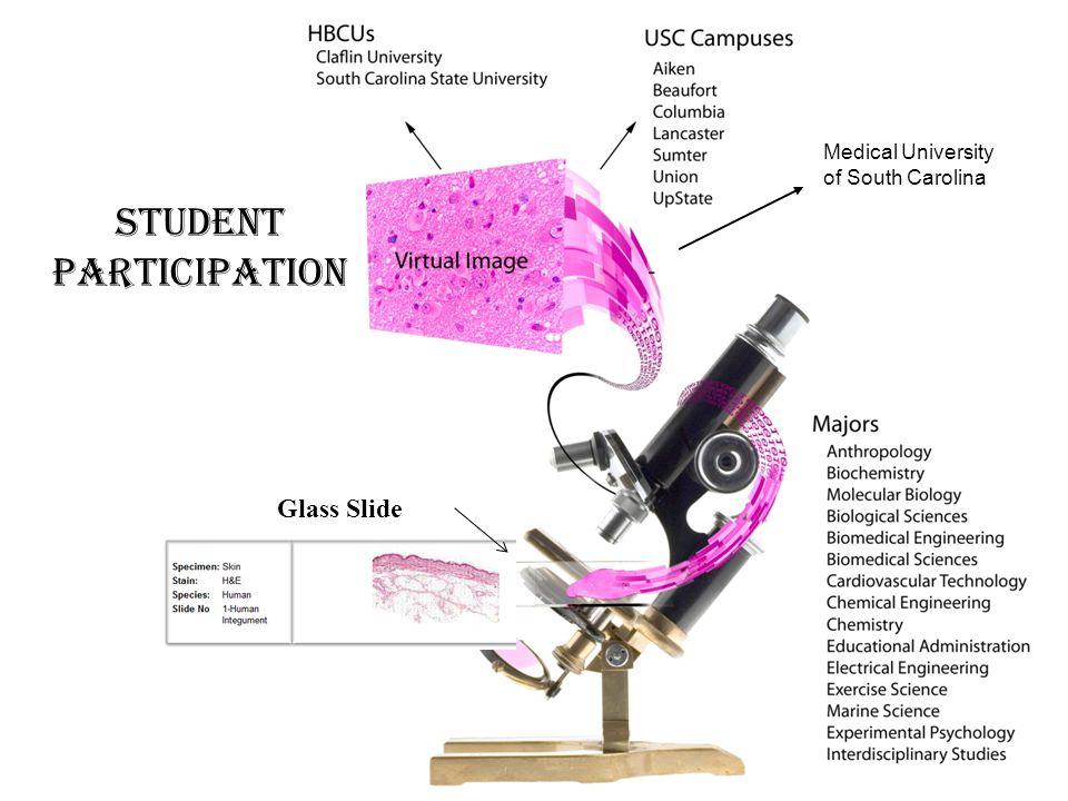 Medical University of South Carolina Student participation Glass Slide