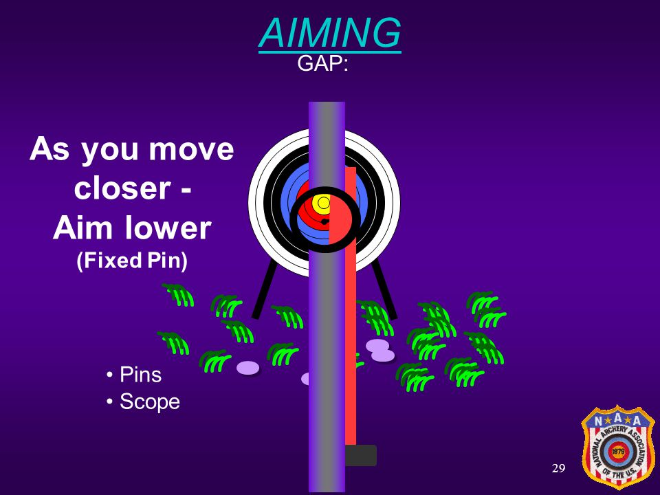 28 AIMING SIGHT: Pins Scope Using a Peep Site