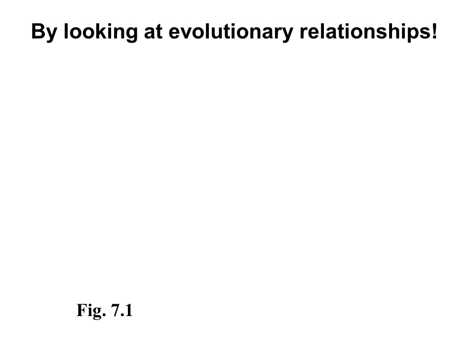 By looking at evolutionary relationships! Fig. 7.1