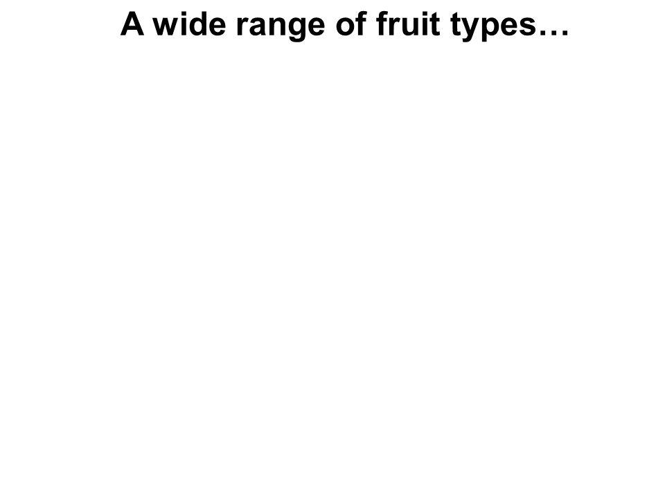 A wide range of fruit types…