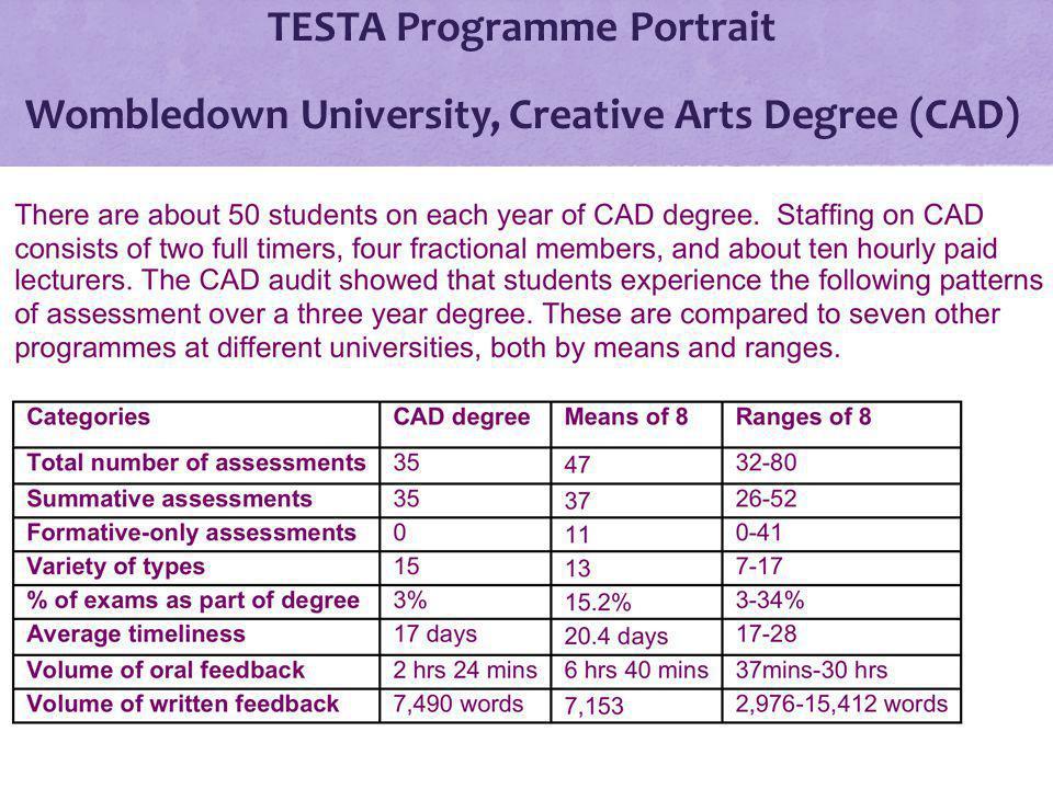 TESTA Programme Portrait Wombledown University, Creative Arts Degree (CAD)
