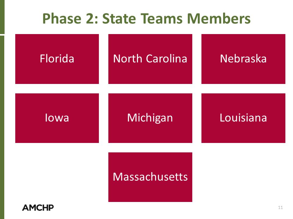 FloridaNorth CarolinaNebraska IowaMichiganLouisiana Massachusetts 11 Phase 2: State Teams Members