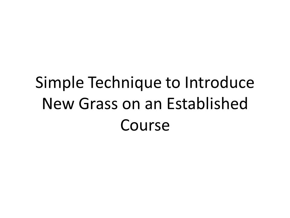 Simple Technique to Introduce New Grass on an Established Course