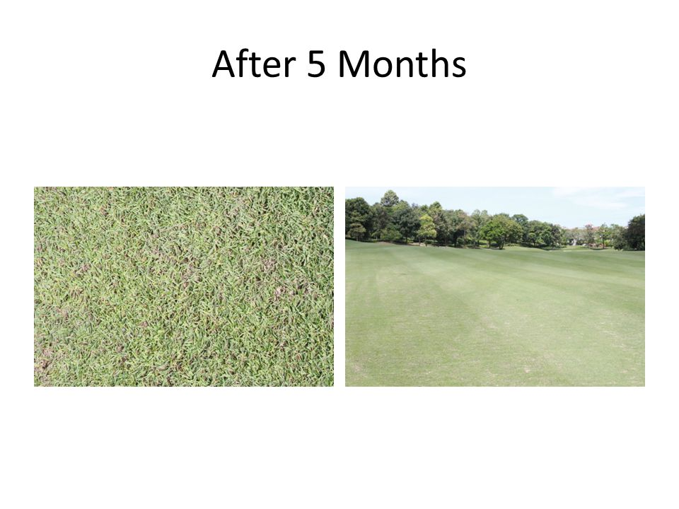 After 5 Months