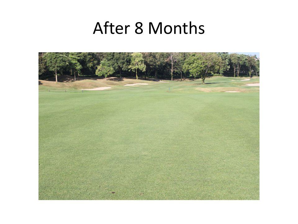 After 8 Months
