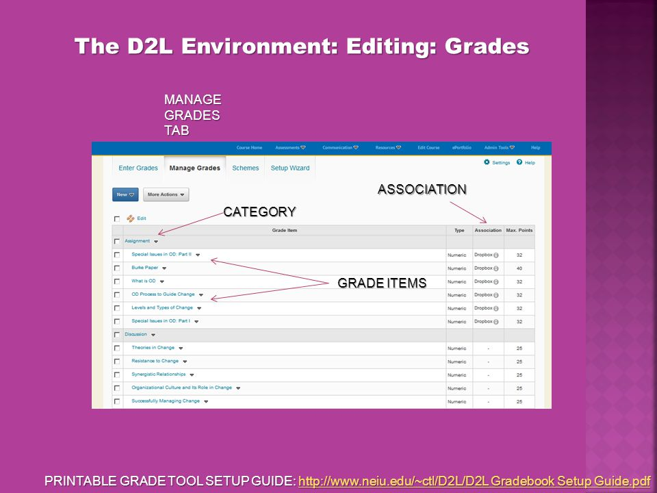 The D2L Environment: Editing: Grades GRADE ITEMS CATEGORY ASSOCIATION MANAGE GRADES TAB PRINTABLE GRADE TOOL SETUP GUIDE: http://www.neiu.edu/~ctl/D2L/D2L Gradebook Setup Guide.pdf http://www.neiu.edu/~ctl/D2L/D2L Gradebook Setup Guide.pdfhttp://www.neiu.edu/~ctl/D2L/D2L Gradebook Setup Guide.pdf