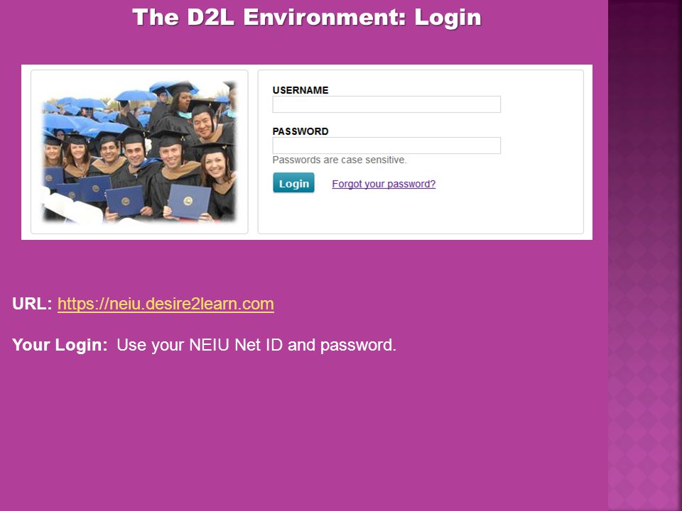 The D2L Environment: Login URL: https://neiu.desire2learn.comhttps://neiu.desire2learn.com Your Login: Use your NEIU Net ID and password.