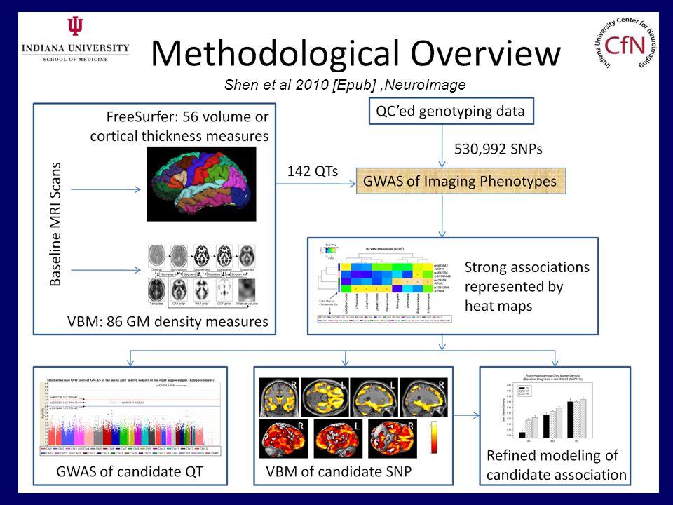 Shen et al 2010 [Epub],NeuroImage