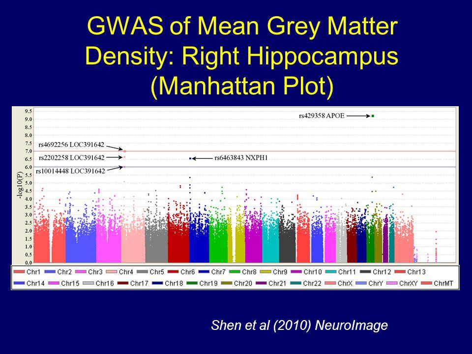 GWAS of Mean Grey Matter Density: Right Hippocampus (Manhattan Plot) Shen et al (2010) NeuroImage
