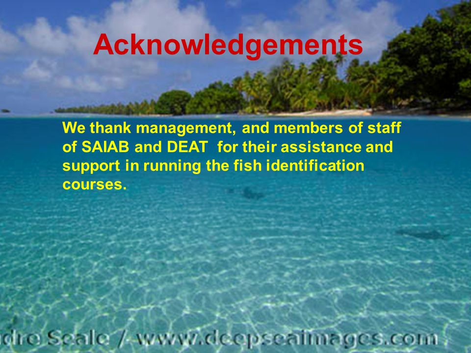 Acknowledgements We thank management, and members of staff of SAIAB and DEAT for their assistance and support in running the fish identification courses.