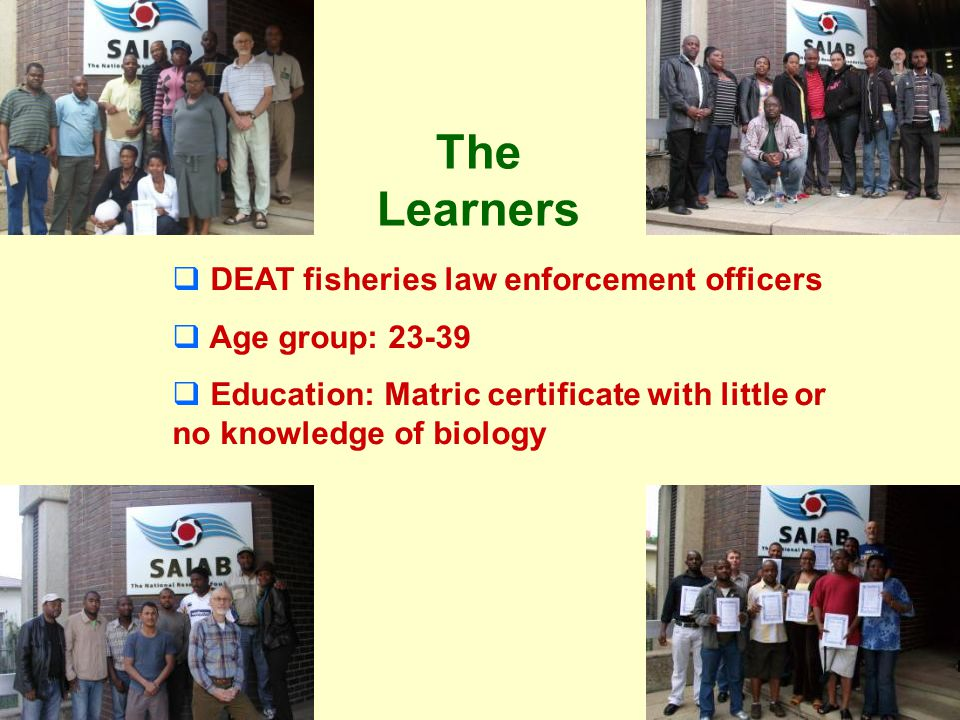 Course experience Many learners expressed a wish for more courses