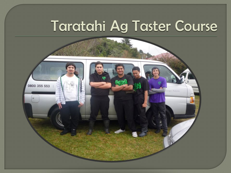 CUPPA TEA OUTSIDE WOOLSHED, RANGATAHI SHARE THEIR EXPERIENCES LOADING UP TO MOVE ONTO NEXT JOB, BREAK FEEDING CATTLE