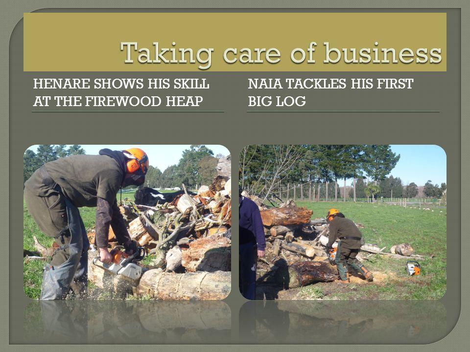 HENARE SHOWS HIS SKILL AT THE FIREWOOD HEAP NAIA TACKLES HIS FIRST BIG LOG