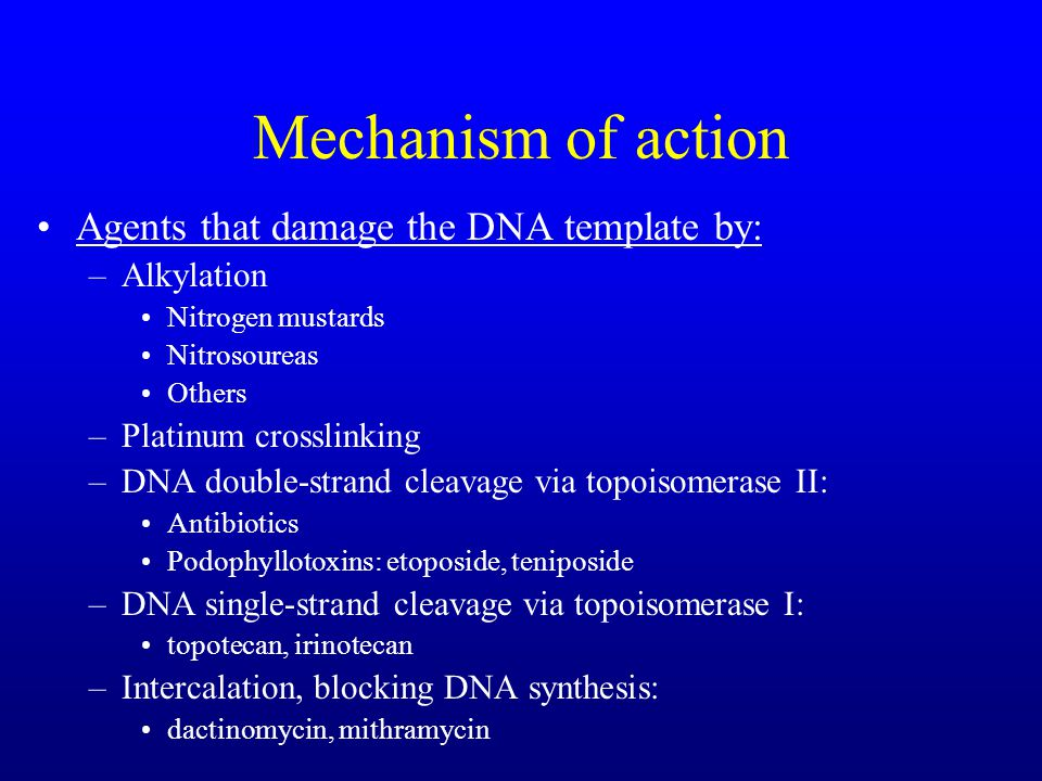 Mechanism of action Agents that damage the DNA template by: –Alkylation Nitrogen mustards Nitrosoureas Others –Platinum crosslinking –DNA double-strand cleavage via topoisomerase II: Antibiotics Podophyllotoxins: etoposide, teniposide –DNA single-strand cleavage via topoisomerase I: topotecan, irinotecan –Intercalation, blocking DNA synthesis: dactinomycin, mithramycin