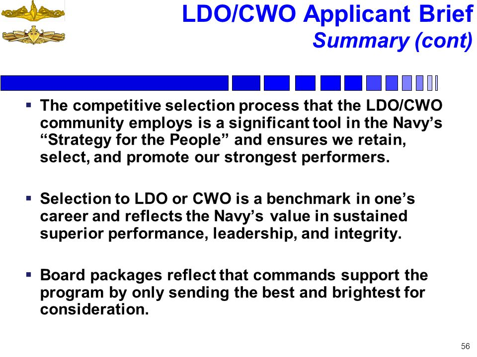 LDO/CWO Applicant Brief Summary (cont) The competitive selection process that the LDO/CWO community employs is a significant tool in the Navys Strateg