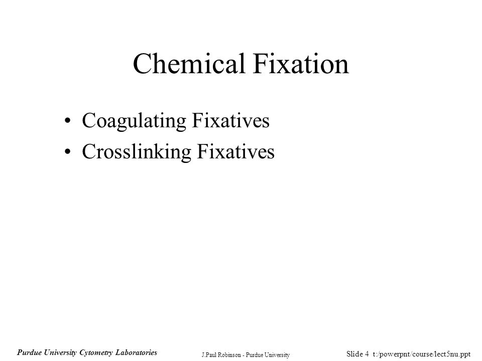 Slide 15 t:/powerpnt/course/lect5nu.ppt J.Paul Robinson - Purdue University Purdue University Cytometry Laboratories Method Solutions –40% formaldehyde in H 2 O (Merck) –80 mM Kpipes, pH 6.8, 5 mM EGTA, 2 mM MgCl 2 –100 mM NaB 4 O 7 pH 11.0 –PBS Ca ++ /Mg ++ free –PBS Ca ++ /Mg ++ free, pH 8.0 (plus both with and without 0.1% Triton X-100 –premeasured 10 mg aliquots of dry NaBH 4 –see detailed methods page 314 of Pawley, 2nd ed.