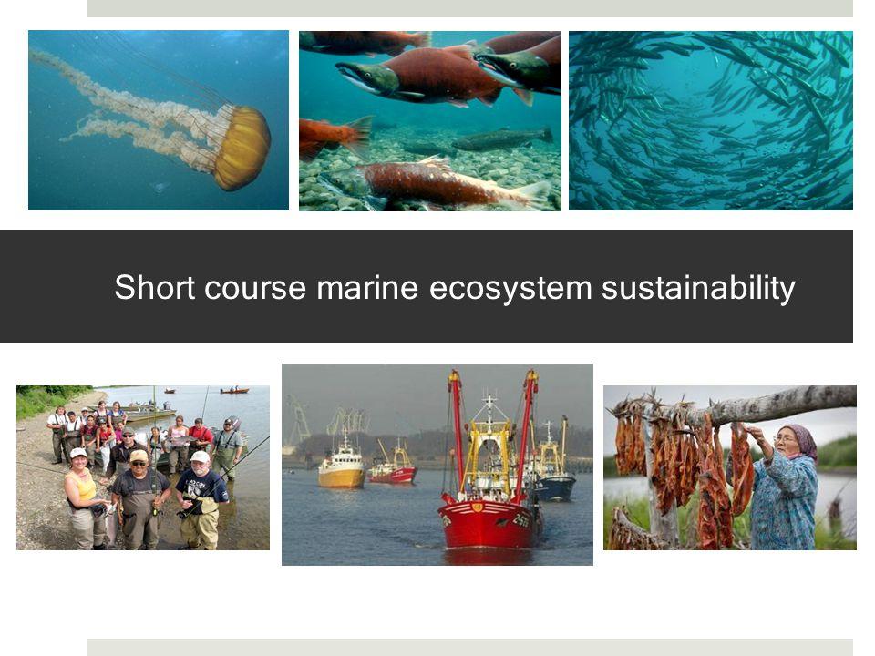 Short course marine ecosystem sustainability