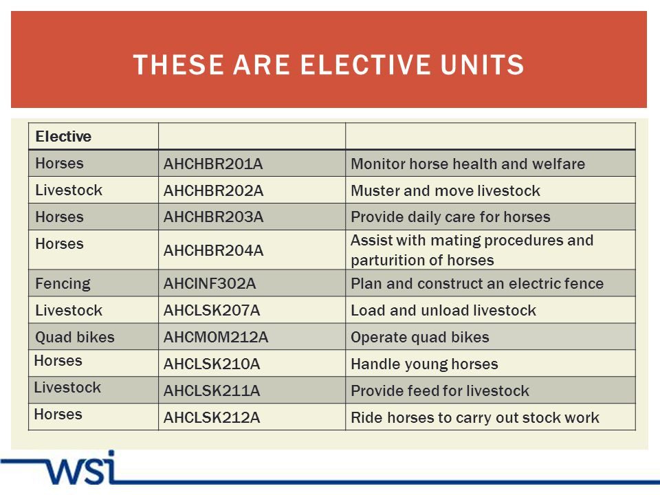 THESE ARE ELECTIVE UNITS Elective Horses AHCHBR201AMonitor horse health and welfare Livestock AHCHBR202AMuster and move livestock Horses AHCHBR203AProvide daily care for horses Horses AHCHBR204A Assist with mating procedures and parturition of horses Fencing AHCINF302APlan and construct an electric fence Livestock AHCLSK207ALoad and unload livestock Quad bikes AHCMOM212AOperate quad bikes Horses AHCLSK210AHandle young horses Livestock AHCLSK211AProvide feed for livestock Horses AHCLSK212ARide horses to carry out stock work