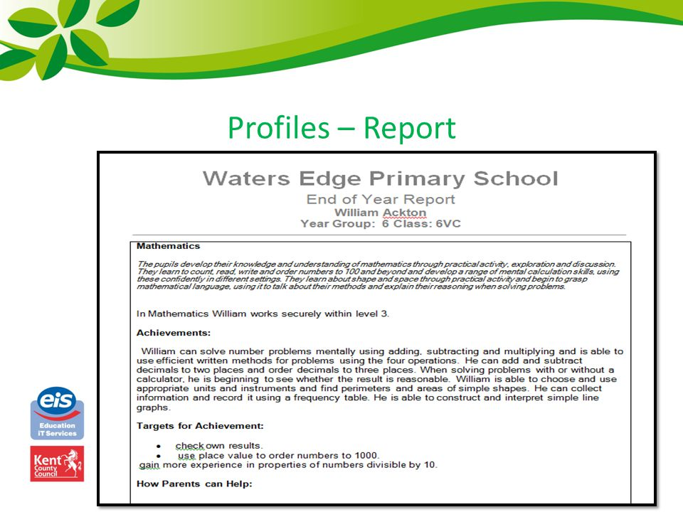 Profiles – Report