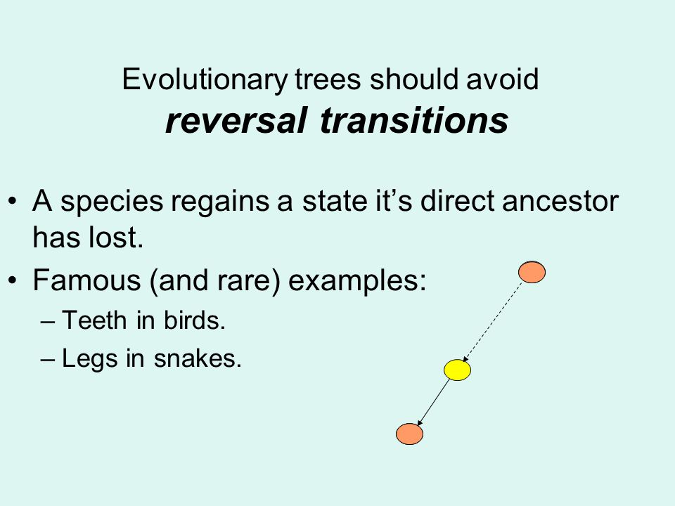 Evolutionary trees should avoid reversal transitions A species regains a state its direct ancestor has lost.