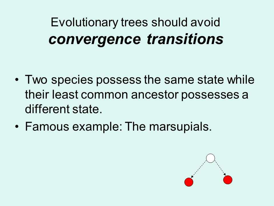 Evolutionary trees should avoid convergence transitions Two species possess the same state while their least common ancestor possesses a different state.