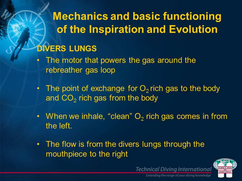 Mechanics and basic functioning of the Inspiration and Evolution DIVERS LUNGS The motor that powers the gas around the rebreather gas loop The point o