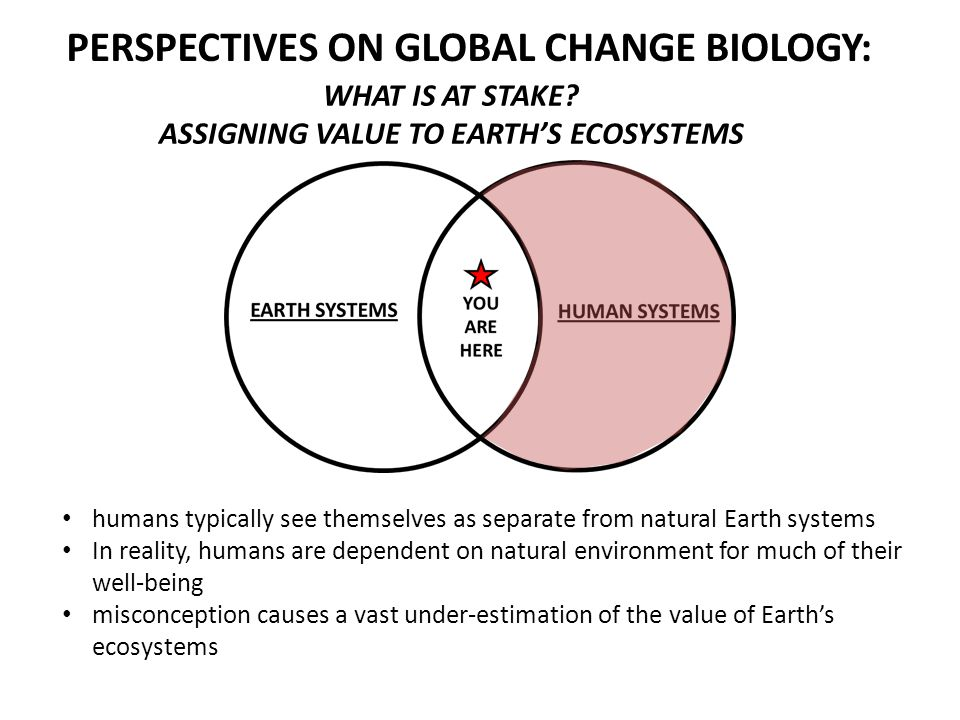 WHAT IS AT STAKE? ASSIGNING VALUE TO EARTHS ECOSYSTEMS humans typically see themselves as separate from natural Earth systems In reality, humans are d