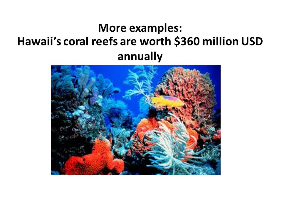 More examples: Hawaiis coral reefs are worth $360 million USD annually
