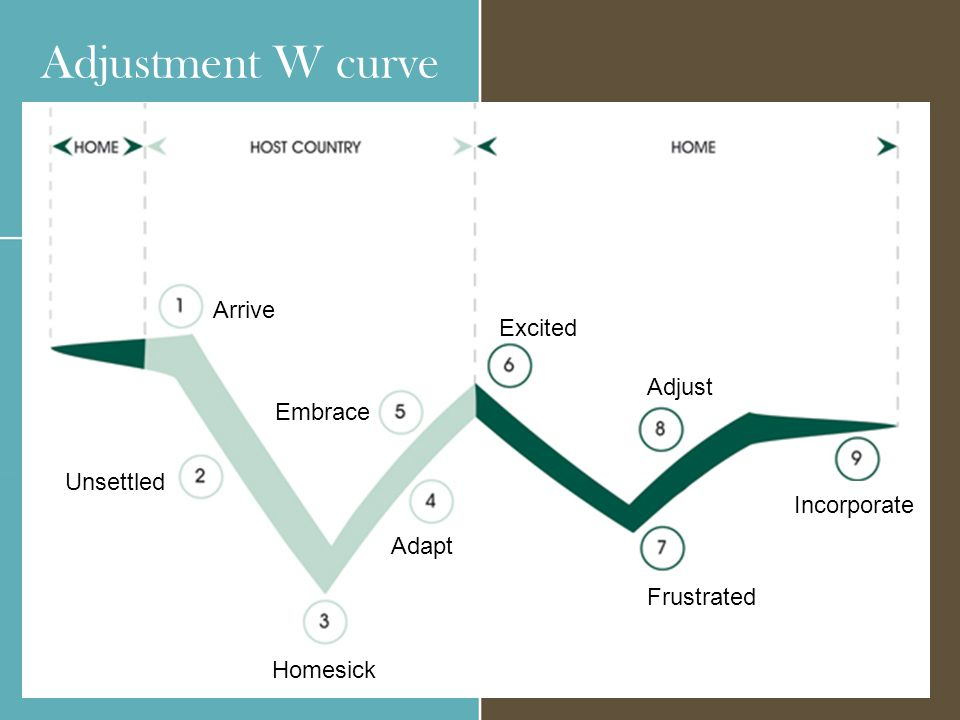 Adjustment W curve Arrive Unsettled Homesick Adapt Embrace Excited Frustrated Adjust Incorporate