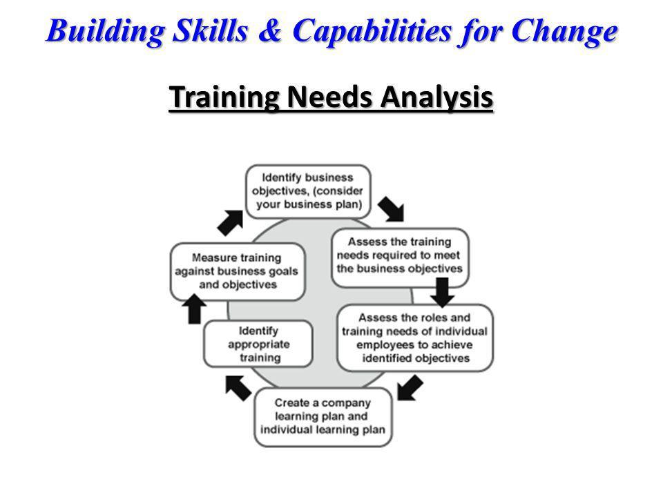 Building Skills & Capabilities for Change Training Needs Analysis