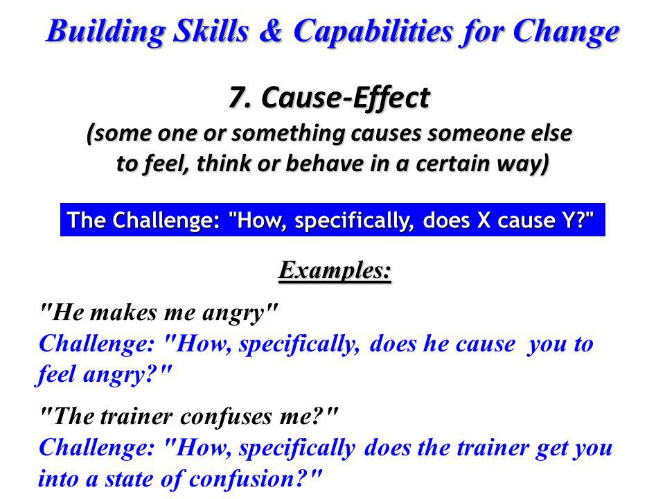 Building Skills & Capabilities for Change Examples: