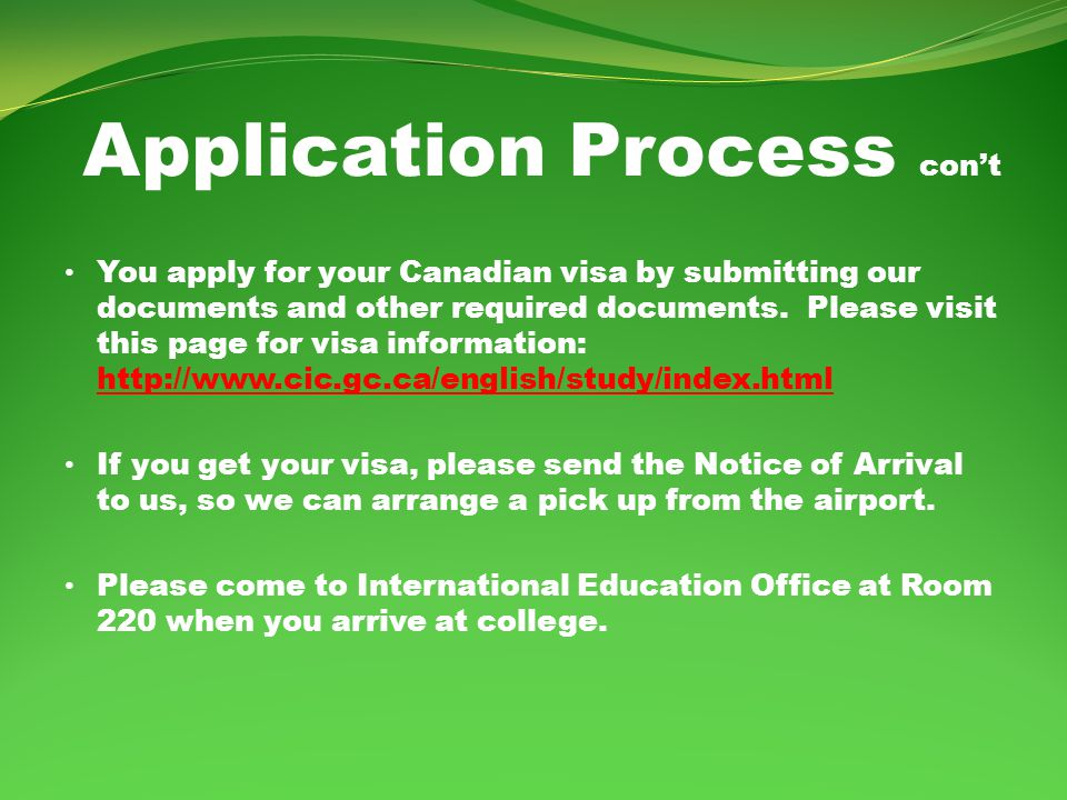 Application Process cont You apply for your Canadian visa by submitting our documents and other required documents.