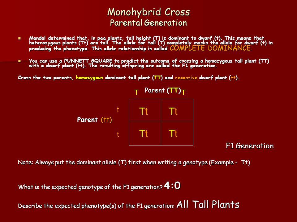 Monohybrid Cross F2 Generation Cross two members of the F1 generation: Parent (Tt) Parent (Tt) Parent (Tt) F2 Generation F2 Generation What is the expected genotype ratio of the F2 generation.