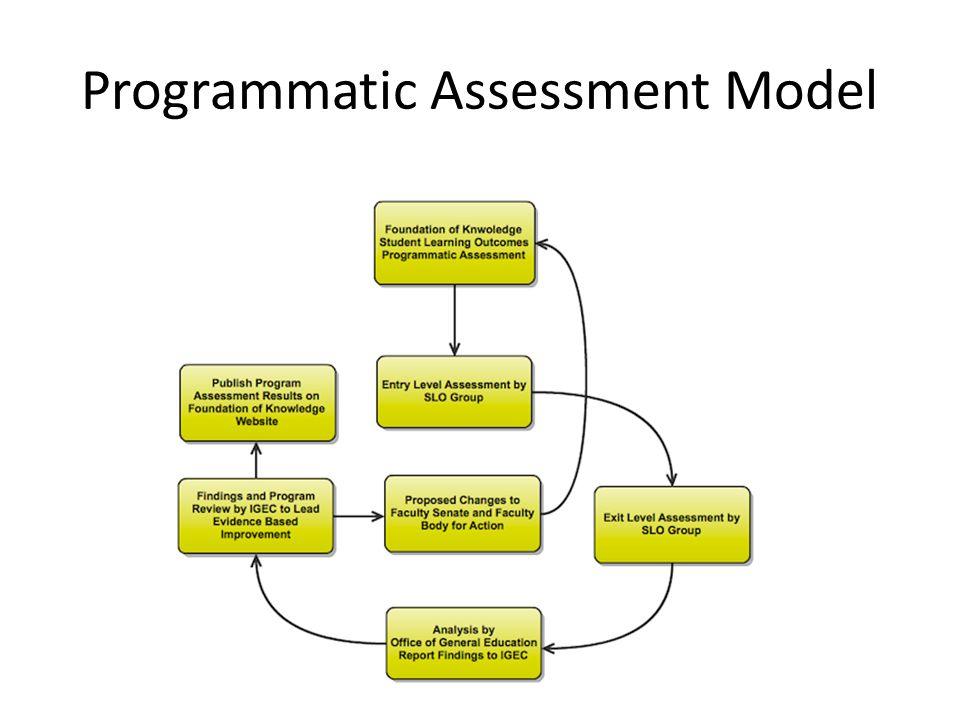 Programmatic Assessment Model