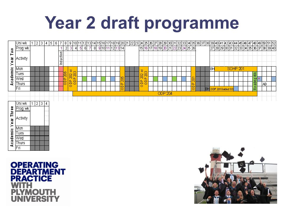 Year 2 draft programme