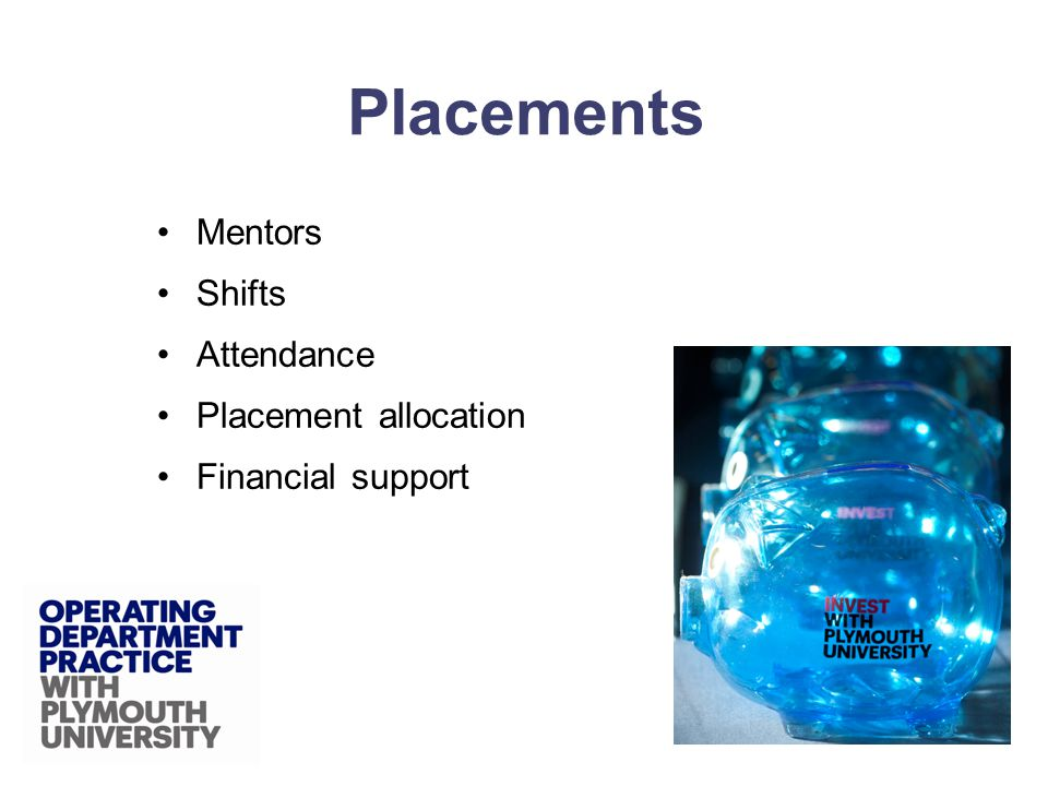 Mentors Shifts Attendance Placement allocation Financial support Placements