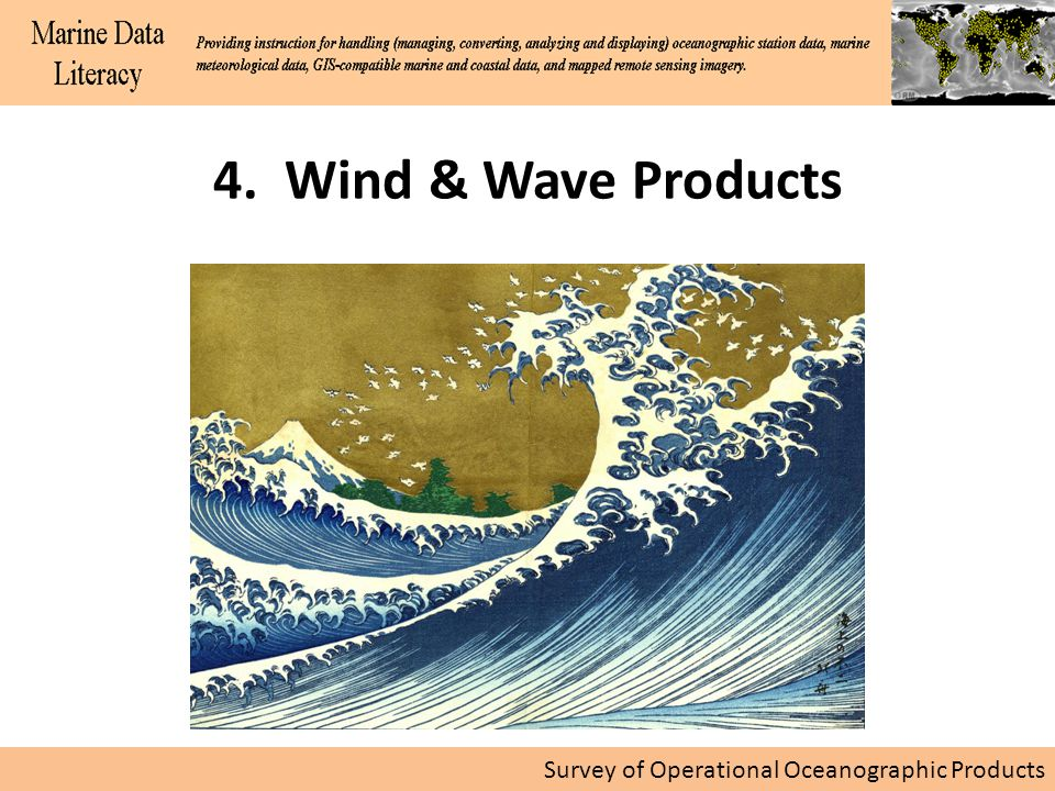 Survey of Operational Oceanographic Products 4. Wind & Wave Products