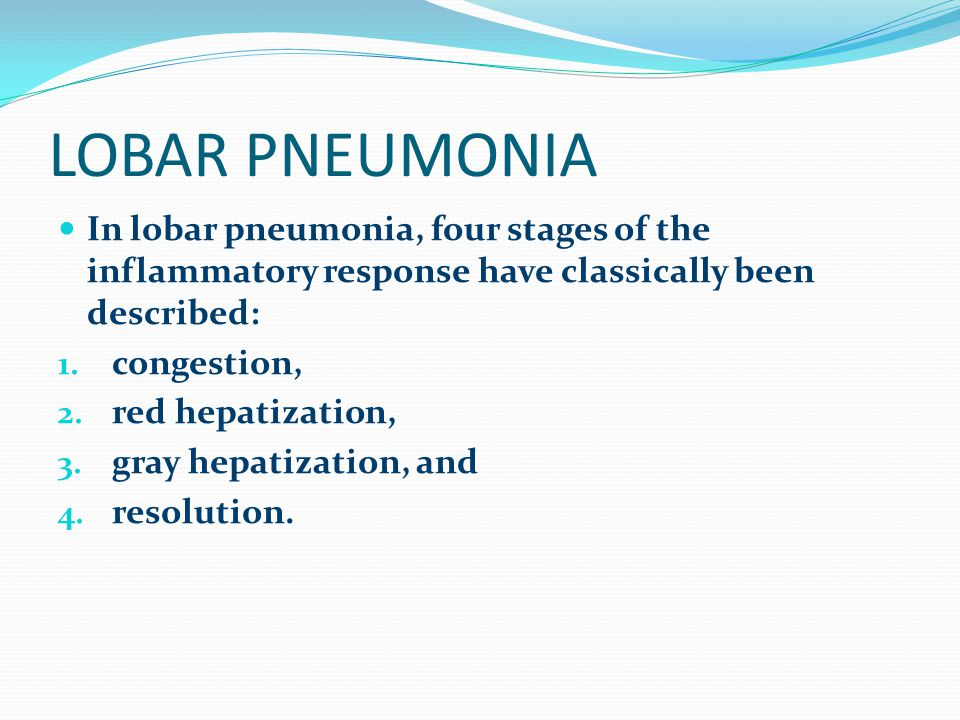 LOBAR PNEUMONIA In lobar pneumonia, four stages of the inflammatory response have classically been described: 1. congestion, 2. red hepatization, 3. g