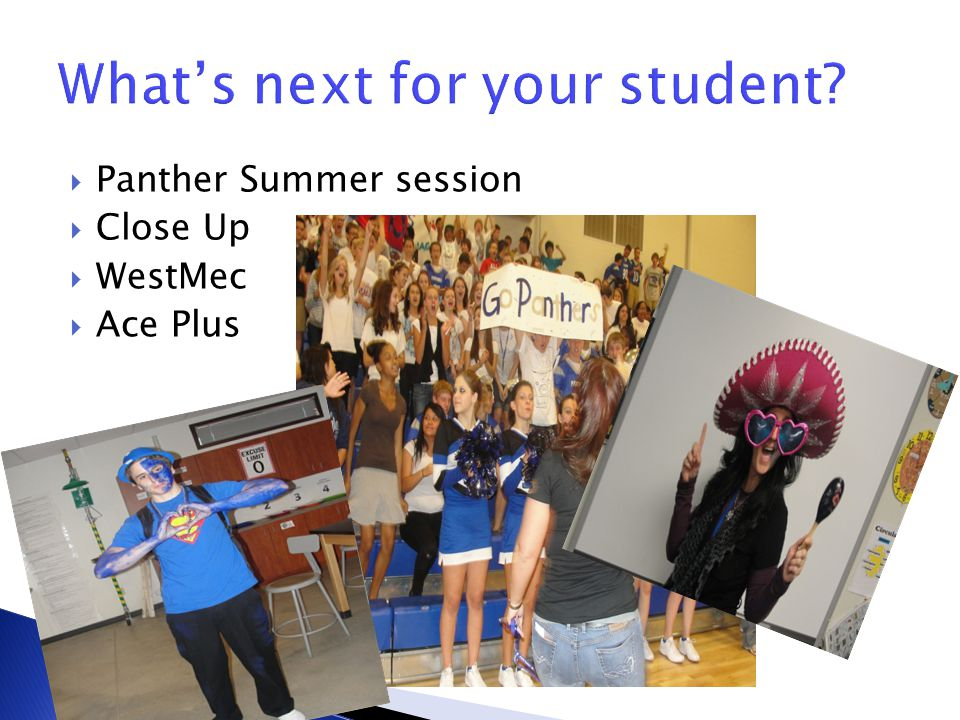 Panther Summer session Close Up WestMec Ace Plus
