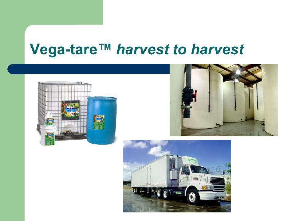 Vega-tare harvest to harvest