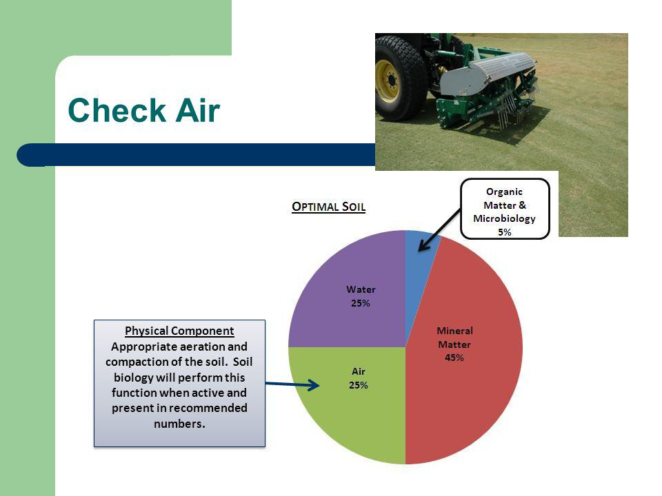 Check Air Physical Component Appropriate aeration and compaction of the soil.