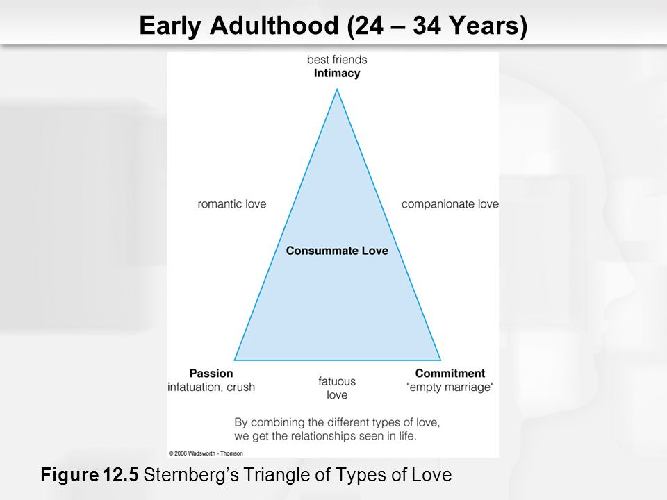 Early Adulthood (24 – 34 Years) Figure 12.5 Sternbergs Triangle of Types of Love