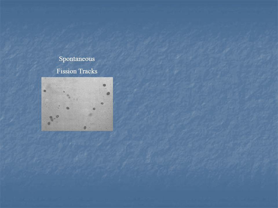 Spontaneous Fission Tracks