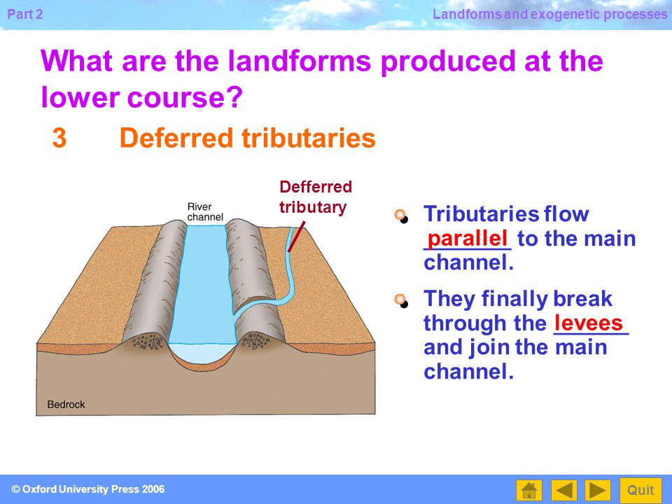 Part 2 Quit © Oxford University Press 2006 Landforms and exogenetic processes 2Levees What are the landforms produced at the lower course.