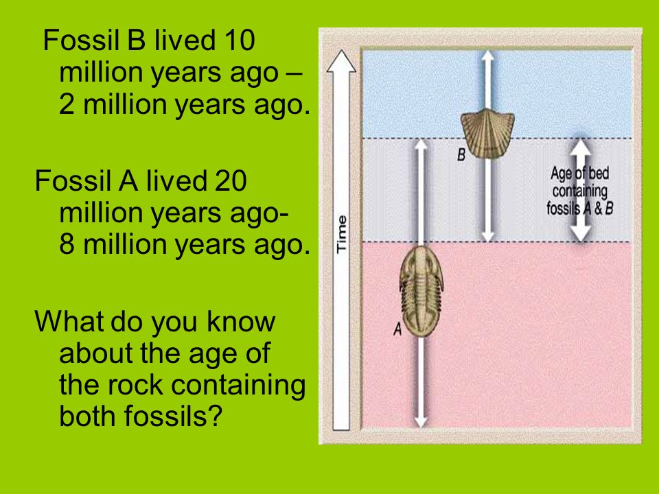 Fossil B lived 10 million years ago – 2 million years ago. Fossil A lived 20 million years ago- 8 million years ago. What do you know about the age of