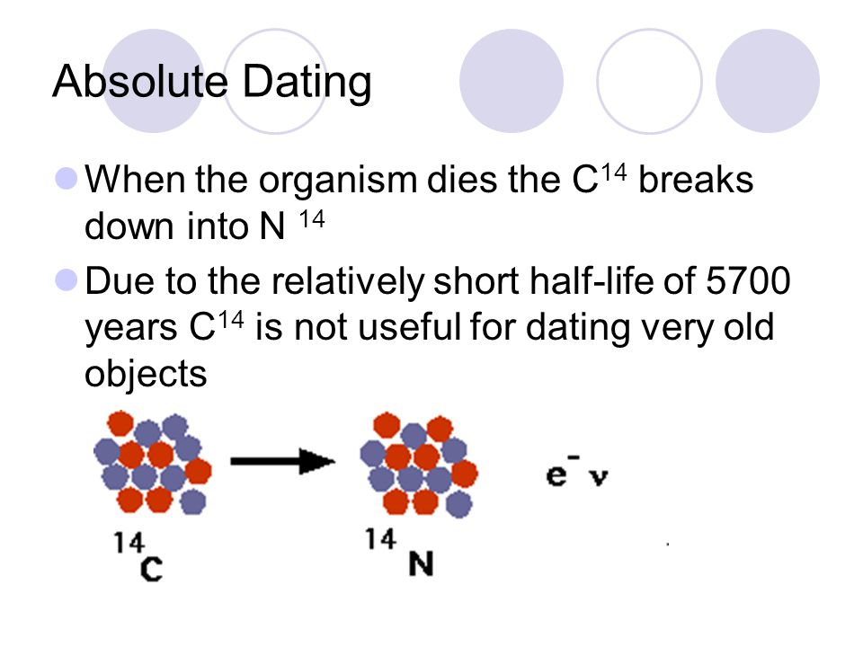 Absolute Dating When the organism dies the C 14 breaks down into N 14 Due to the relatively short half-life of 5700 years C 14 is not useful for dating very old objects