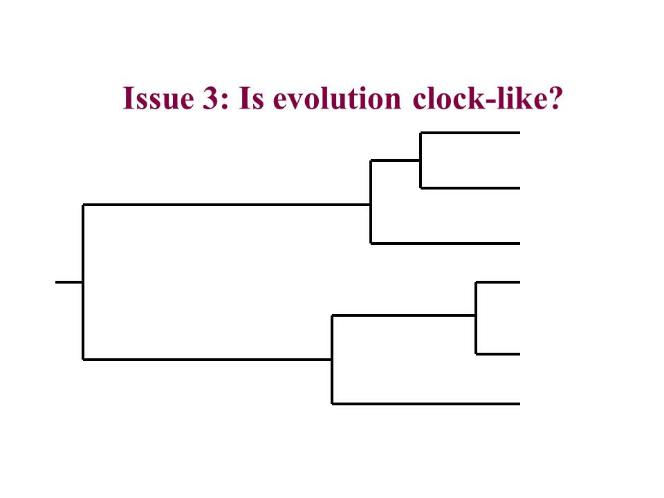 Issue 3: Is evolution clock-like