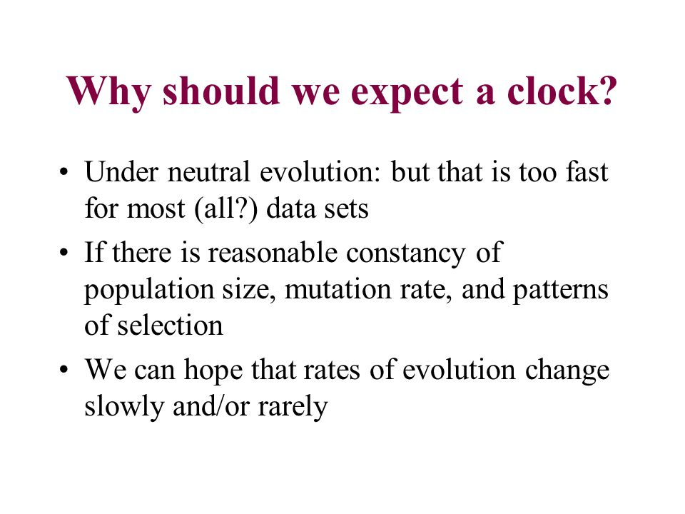 Why should we expect a clock.
